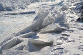 Ice on Vistula river — Stock Photo