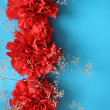 Royalty-Free Stock Photo: Red flowers on blue background