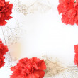 Red flower frame border on white — Stock Photo