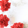 Stock Photo: Red carnation flowers corner