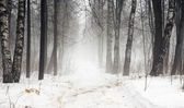 Winter snow road — Stock Photo