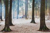 Winter campfire — Stock Photo