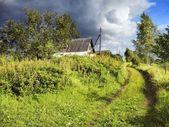 Grönt gräs väg — Stockfoto