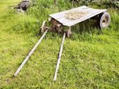 Rural cart — Stock Photo