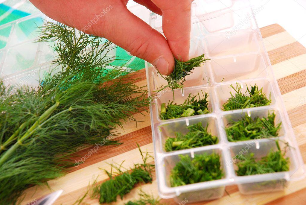 заготовки на зиму зелени с фото