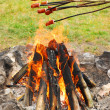 Sausages on sticks grilled above fire - Stock Photo