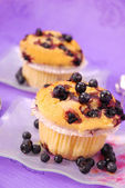 Blueberry muffins — Stockfoto