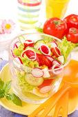 Fresh salad with salami — Stock Photo