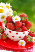 Bowl of fresh strawberries — Stock Photo