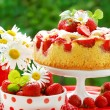 Strawberry cake on table in the garden — Stock Photo #3298324