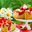 Strawberry cake on table in garden — Stock Photo #3298333