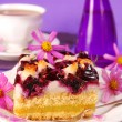 Stock Photo: Blueberry and coconuts cake