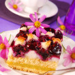 Blueberry and coconuts cake - Stock Photo