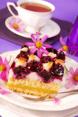 Blueberry and coconuts cake — Stock Photo