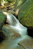 Small Waterfall on in a Tropical Rainforest — Stock Photo