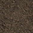 Soil background — Stock Photo