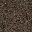 Soil background — Stock Photo #2747178