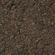 Soil background — Stock Photo #2747211