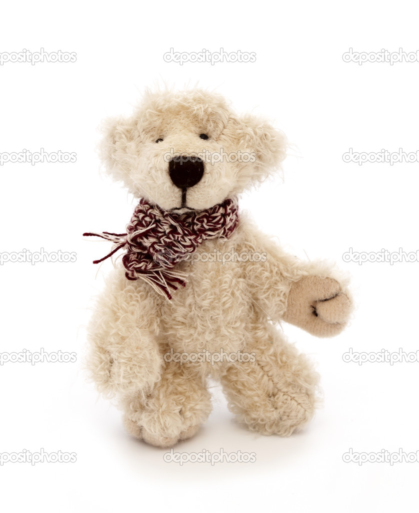 Teddy Bear toy, white background  Stock Photo #2741944
