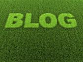 Grass Blog — Stock Photo