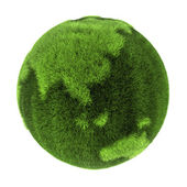 Grass Earth - Asia and Australia — Stock Photo