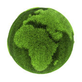 Grass Earth - Europe and Africa — Stock Photo