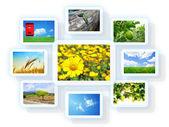 Photo collage — Stock Photo