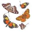 Different realistic butterflies — Vector de stock #2847193