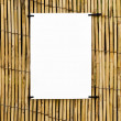 Bamboo cane background with clear space — Stock Photo #2797190