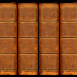 Постер, плакат: Old vintage leather book spines with sil