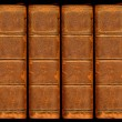 Old vintage leather book spines with sil — Stock Photo