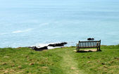 Lonely bench on coast hillside against a — Stock Photo