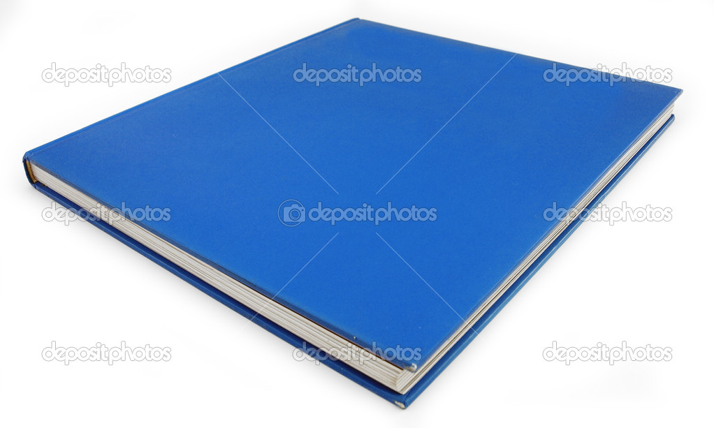 Blue Book Background Democrat Politics concept — Stock Photo #2797304