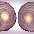 Inside of an Onion — Stock Photo