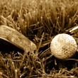 Rough old gold club and ball sepia image — Stock fotografie