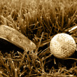 Rough old gold club and ball sepia image — Stockfoto