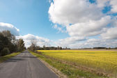 Rural roads and rapeseed field — Stock Photo