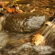 Peacefull water in the brook — Stock Photo