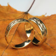 Stock Photo: Wedding rings on autumn sheet