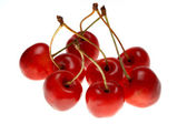 Red sweet cherry on a white background — Stock Photo