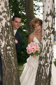 Happy groom and the bride near birches — Stock Photo