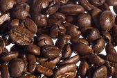 Coffee grains — Stock Photo