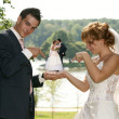 Young  Bride And Groom posing together - Photo