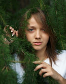 The girl in fluffy branches of a fur-tree — Stock Photo