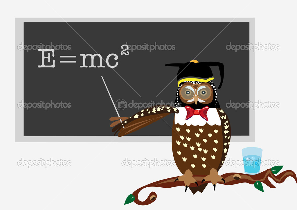 Vector illustration of an owl, while teaching  a theory of relativity. — Stock Vector #2847824