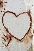 Heart cut on tree — Stock Photo