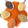 Spices on spoons — Stockfoto