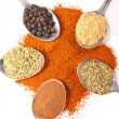 Spices on spoons - Stock Photo