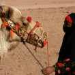 Bedouin woman with camel - Stockfoto