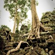 Ta prohm temple with trees — Stock Photo